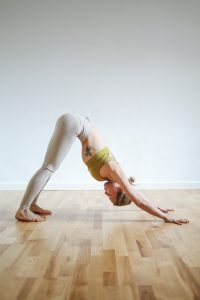 Downwards facing dog yoga asana